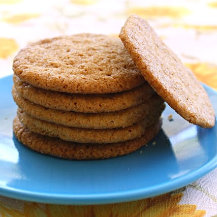 A stack of gingersnap cookies on a blue plate.