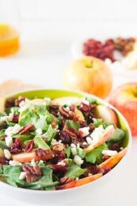 Side on shot of apple pecan salad.