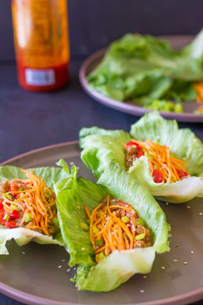 Side shot of three asian lettuce wraps.