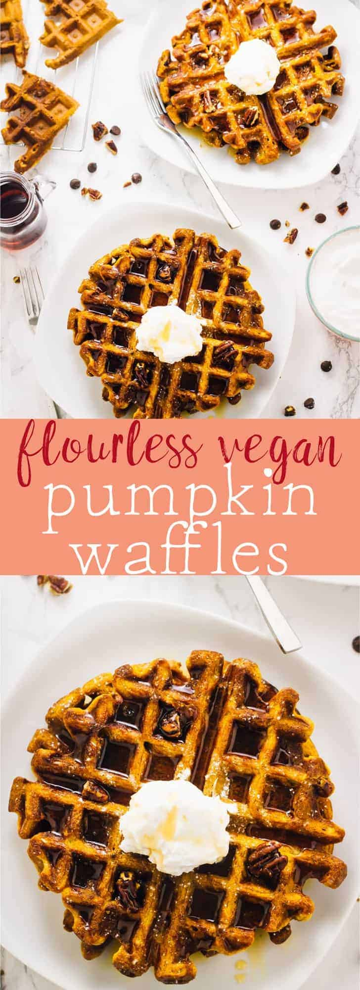 These Flourless Vegan Pumpkin Waffles are a tried and true waffle recipe. They're loaded with delicious pumpkin flavour, are freezer-friendly and are so easy to make! via https://jessicainthekitchen.com