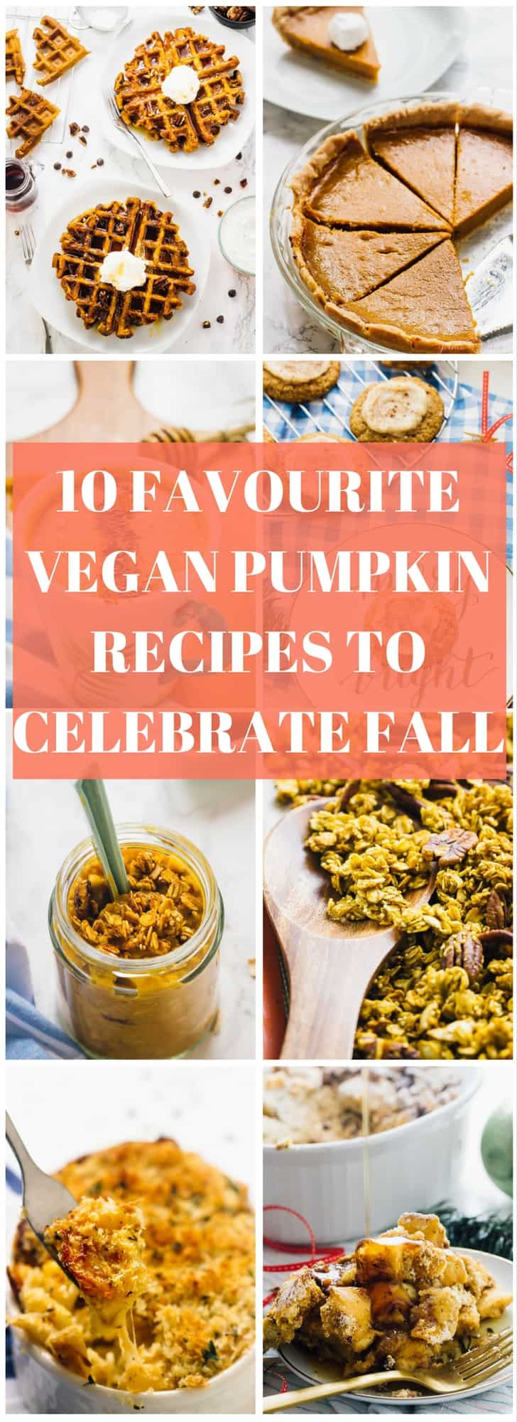 Happy Fall!! Here are 10 Favourite Vegan Pumpkin Recipes to Celebrate Fall right! They range from breakfasts to dinners to desserts and are all gluten free!