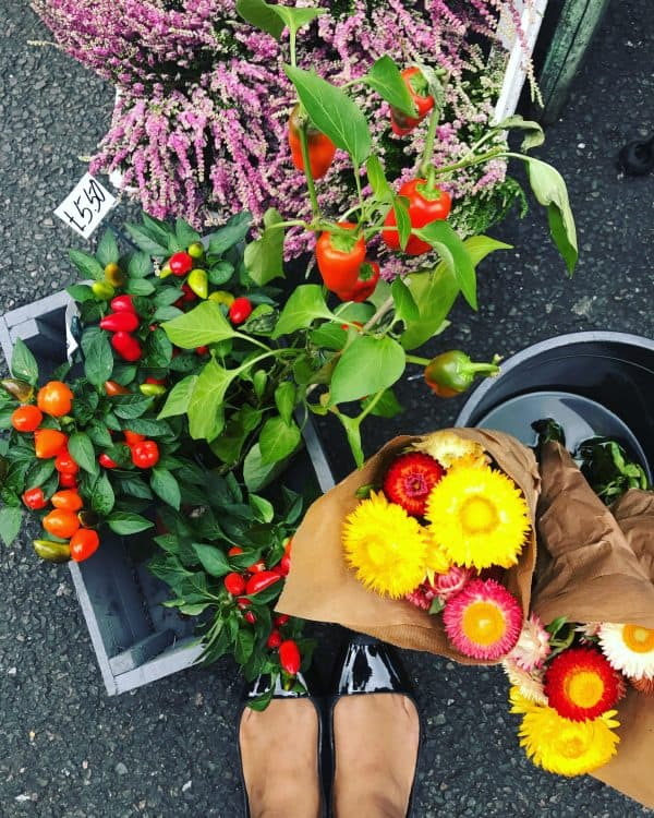 Top down view of flowers in a market.