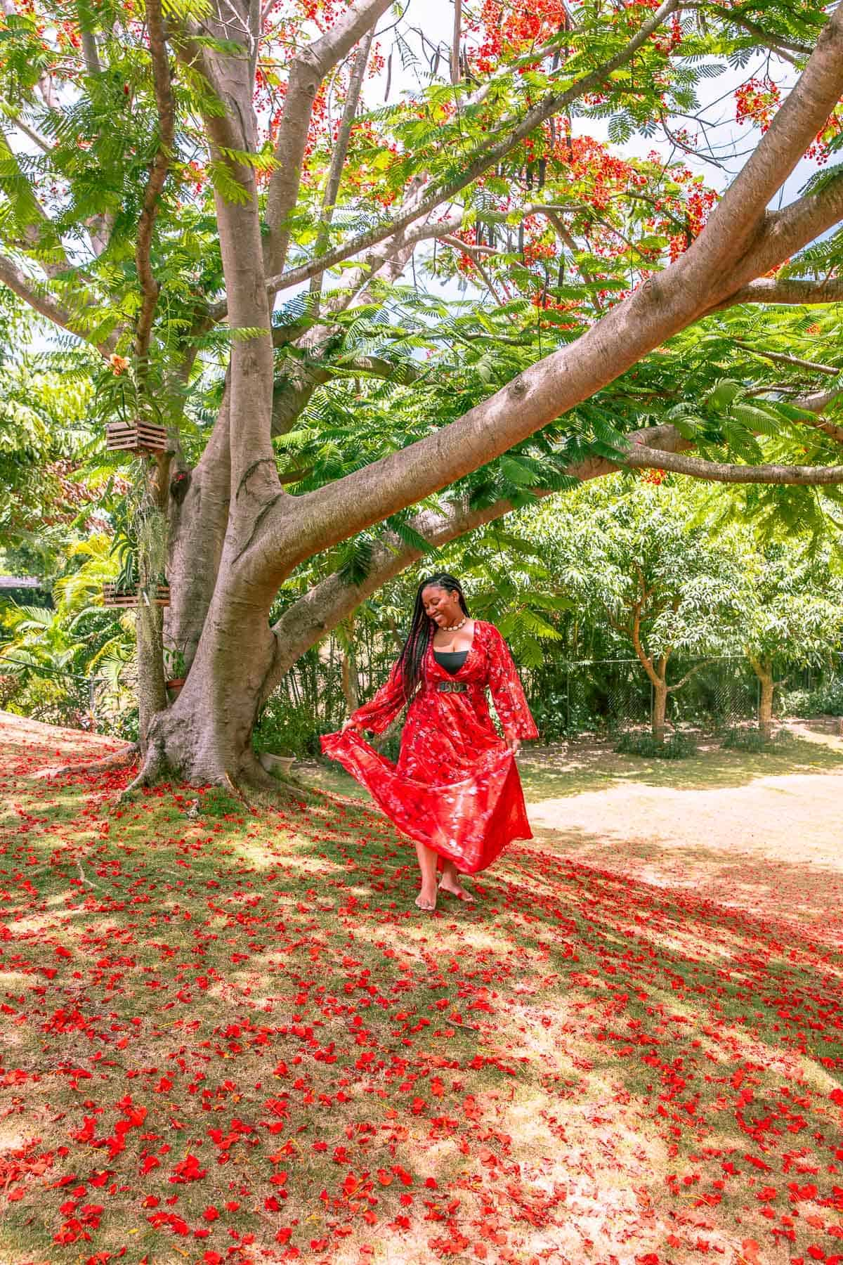 Jessica in a red dress, standing by a tree.