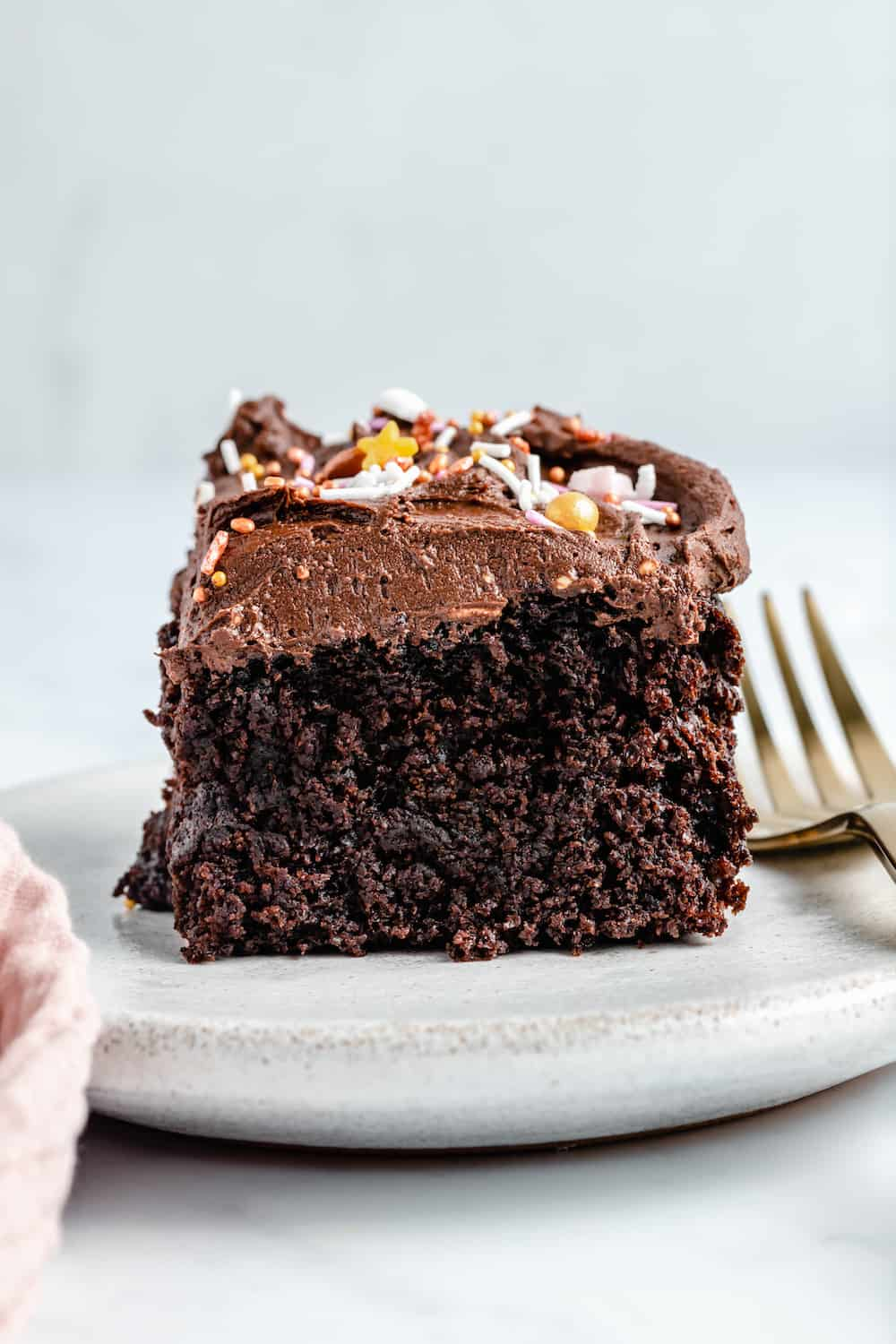 Square of chocolate sheet cake with sprinkles.