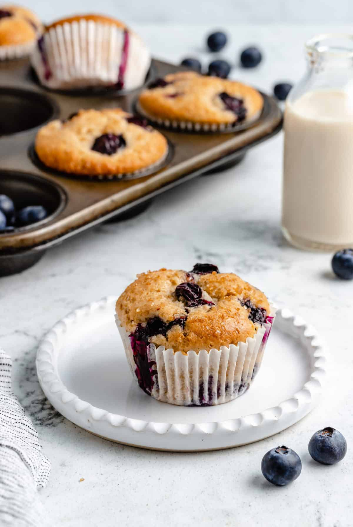 Blueberry muffin on a plate.