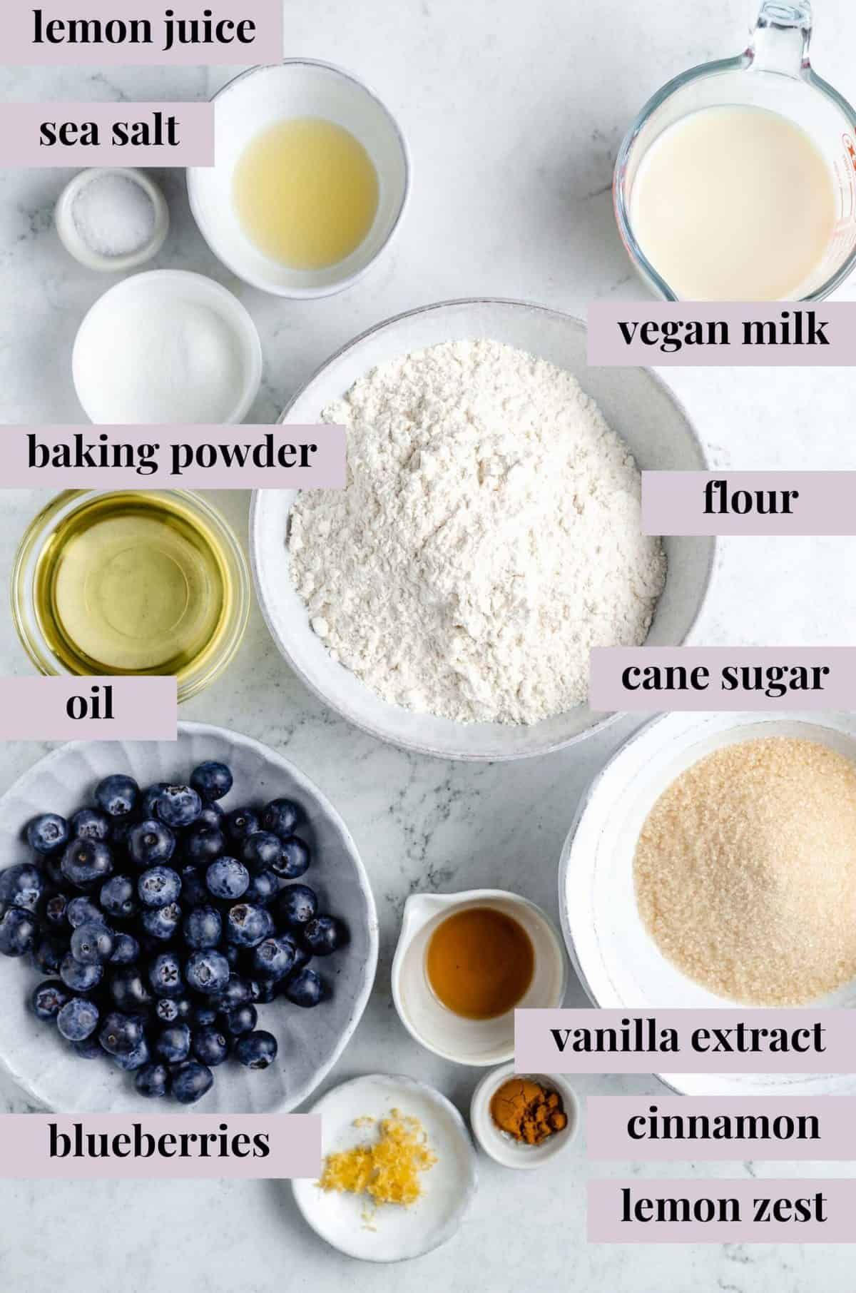 Ingredients for vegan blueberry muffins.