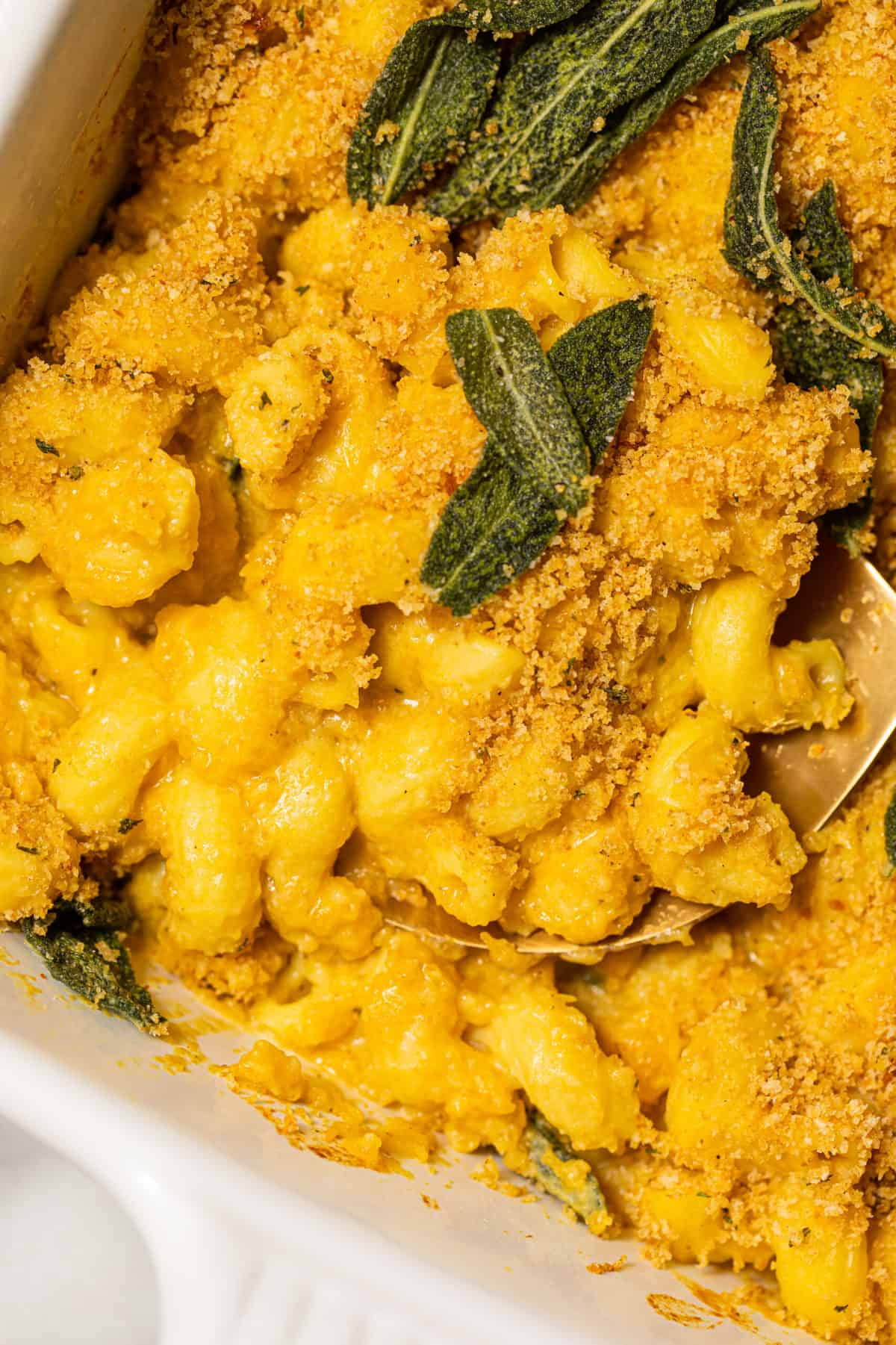 Butternut squash pasta with crispy sage leaves.