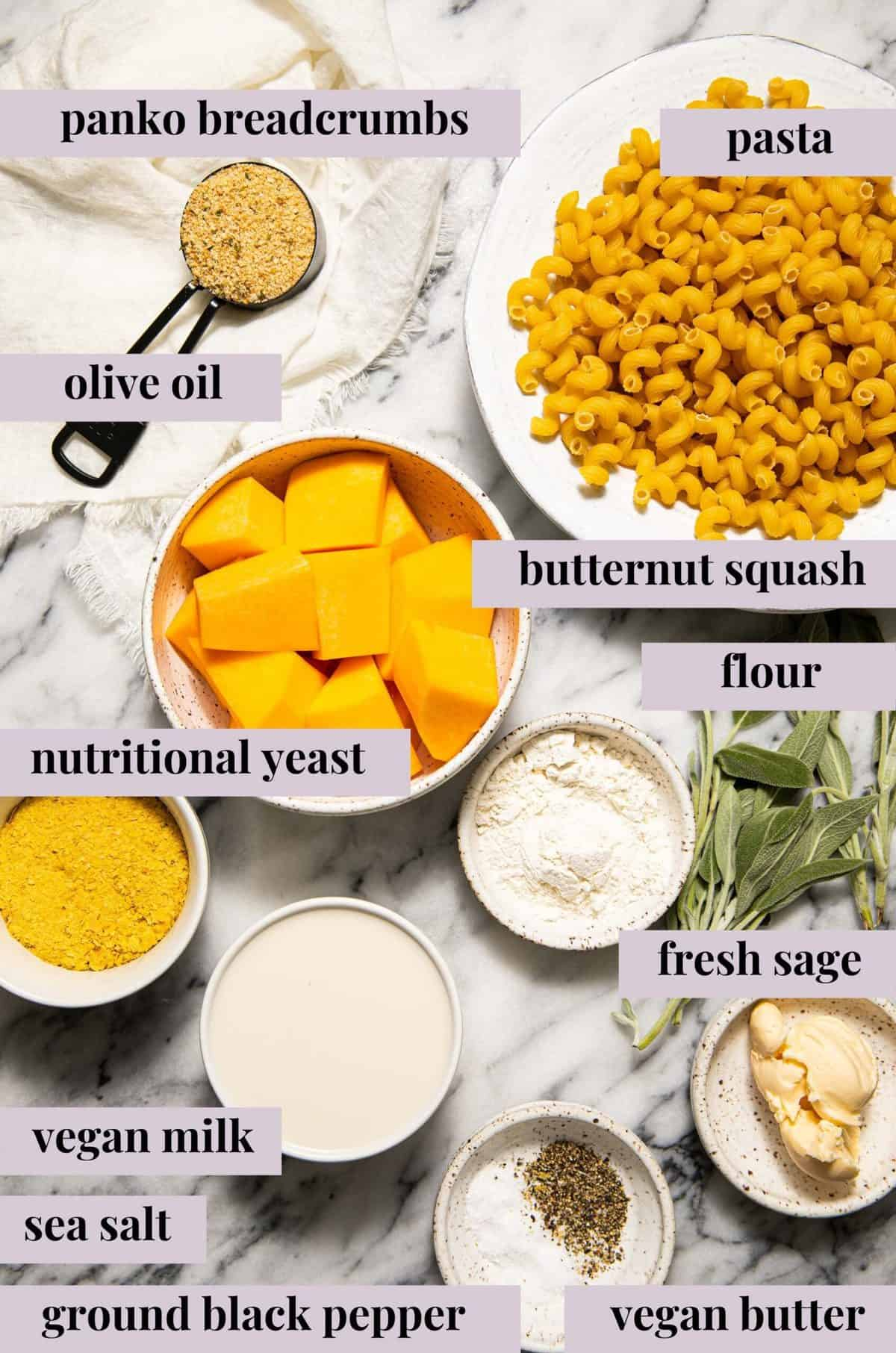 Ingredients for vegan butternut squash mac and cheese.